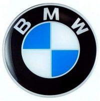 Insignia Bmw Blanco y azul